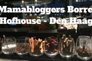 Mamabloggers Borrel - Hofhouse Den Haag