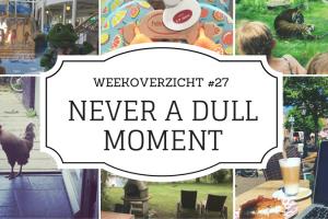 Weekoverzicht Never a Dull Moment #26