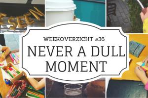 Weekoverzicht Never a Dull Moment #36