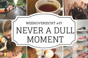 weekoverzicht - Never a Dull Moment #37