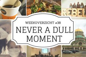 weekoverzicht Never a Dull Moment #38