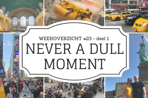 Never a Dull Moment week 23 New York deel 1