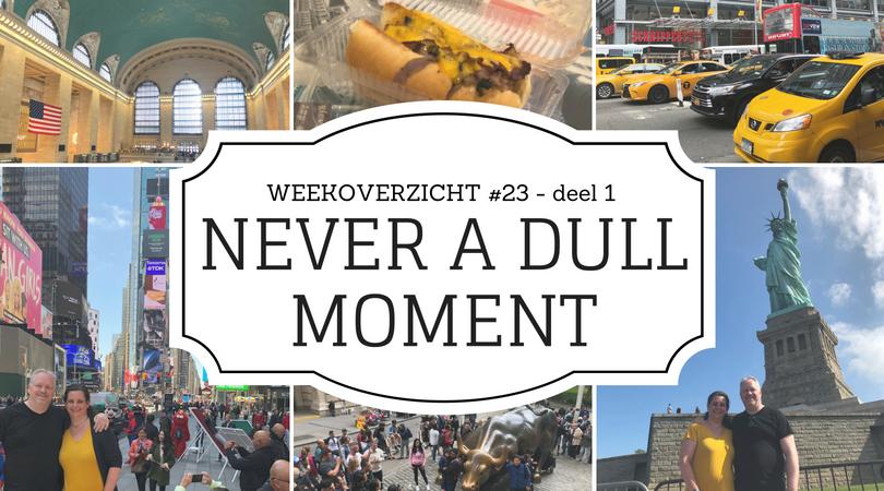 Never a Dull Moment week 23 New York deel 1